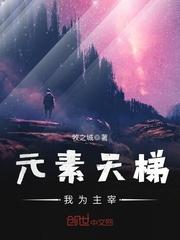 【元素天梯,我为主宰在线阅读完整版】主角兰笙李子