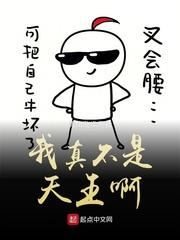 白衣传小说