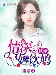 宋云庭小说
