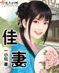 延林的小说