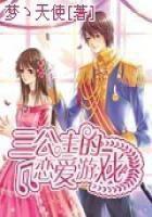 三公主的恋爱游戏