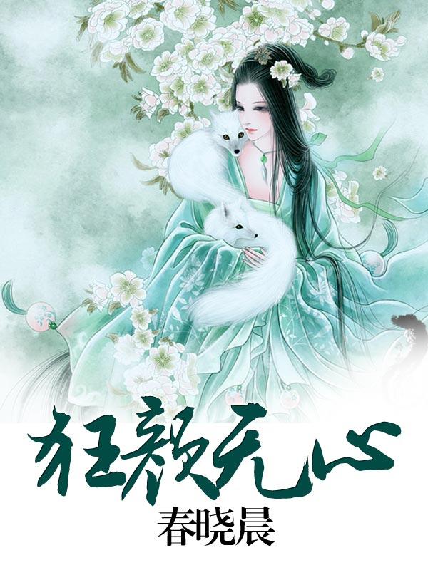 香港风水师小说