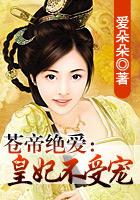 吕佳容小说