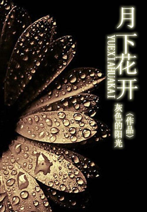 海王龙小说