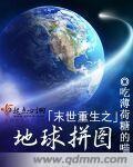 末世重生之地球拼图