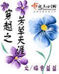 女主是徐贤的小说