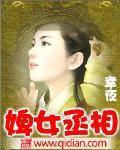 婢女丞相(主角小君竹梅丽丝)免费试读完结版