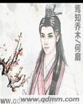 剑啸江湖小说