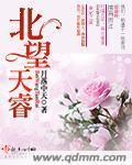 晓青系列小说