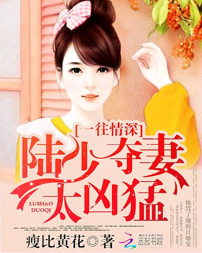 女主叫宁夕的小说