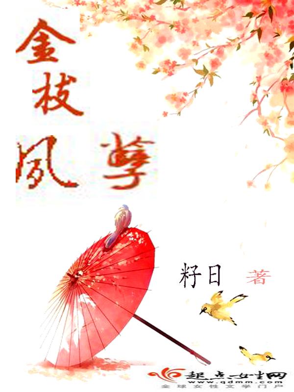 云小h小说