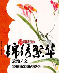 锦绣繁华精彩阅读章节列表 沈锦颜程芳全文阅读大结局