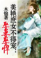 叶舞的小说