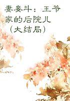 妻妾斗:王爷家的后院儿