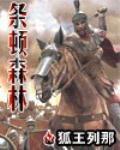 有刀剑神域小说