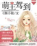 女仆系列小说