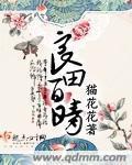 《良田百晴》主角杨百晴宝姨全文阅读完本