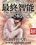 林小冬小说