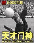 好看的重生之香港小说
