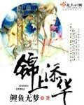 【锦上添华免费阅读在线试读】主角苏锦大胡子