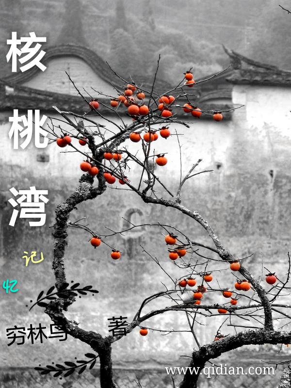 核桃湾记忆小说