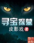 《寻宝探墓》主角杨勇杨先生免费阅读小说在线试读