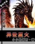 【异世星火最新章节完本精彩章节】主角龙飞龙氏