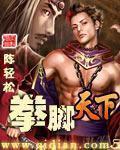 杨叶的小说