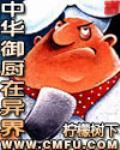 凤凰浴火小说
