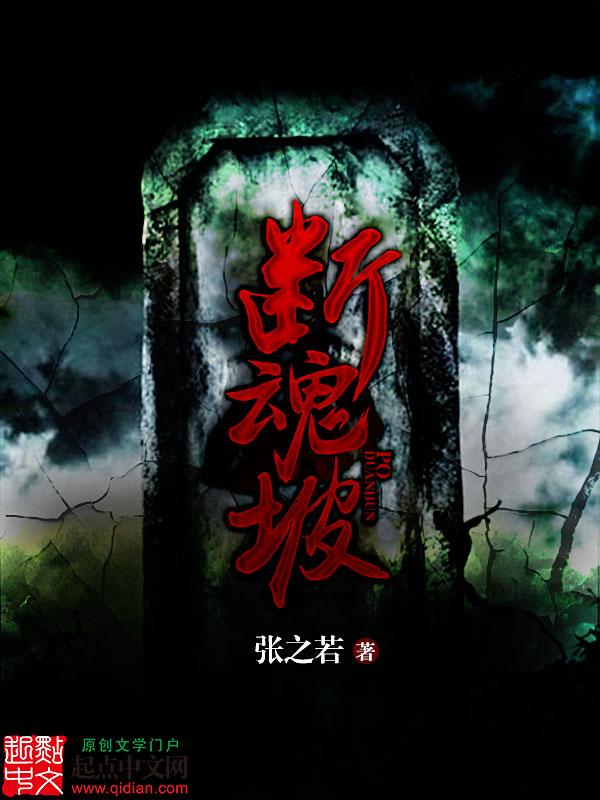 辅佐刘备的小说