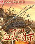 血火明末(主角周世龙赵阳)在线阅读免费试读
