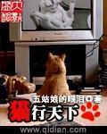 《猫行天下》主角王卓莫斯科在线试读小说完本