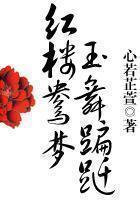 【红楼鸳梦玉舞蹁跹章节列表精彩章节】主角太妃王妃