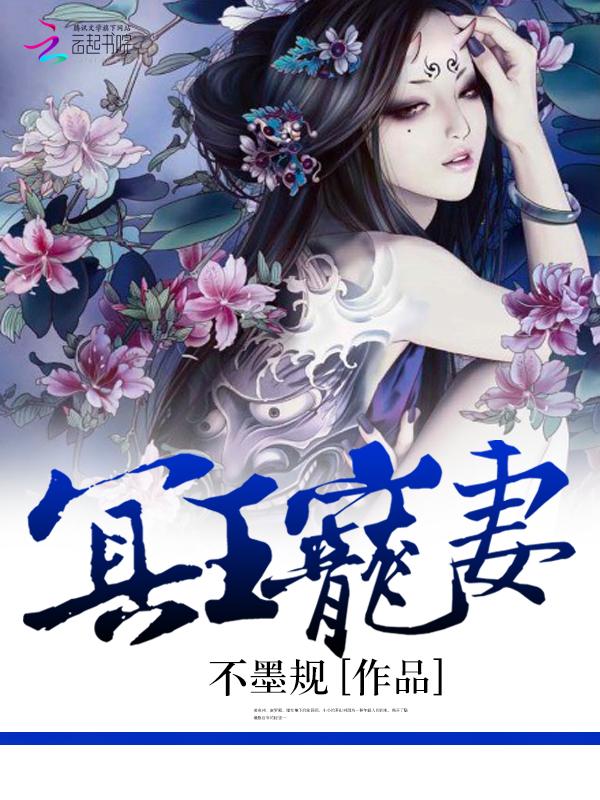 武林风暴小说