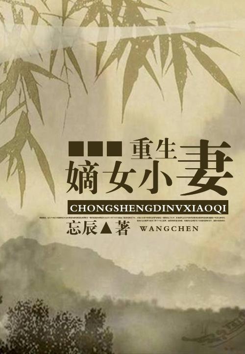 赵兵的小说