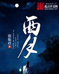 《西月》主角秦子婴精彩试读完整版