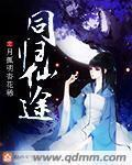 同归仙途主角叶妍程茗雁章节列表免费试读全文阅读