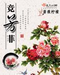 诸明锦小说