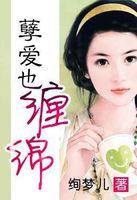 仙灵咒小说