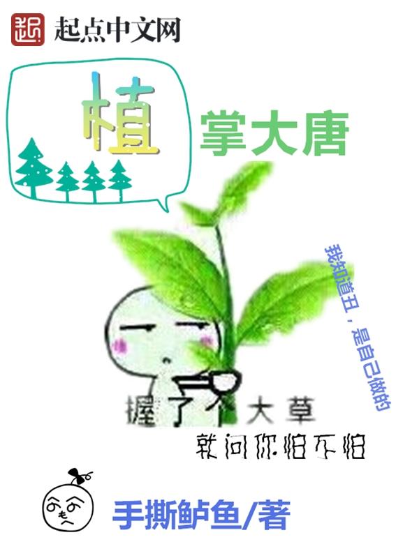 黄巾贼小说