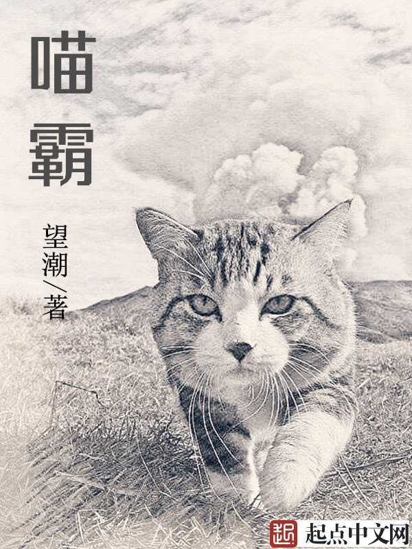 喵霸章节列表大结局 罗恩沙拉小说完本精彩章节