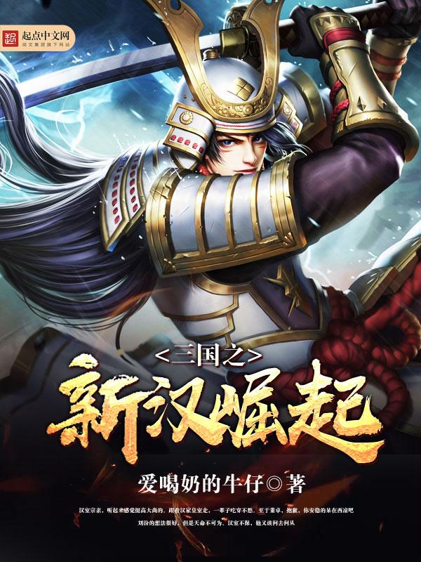 三国之新汉崛起小说