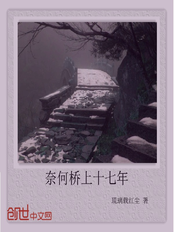 奈何桥上十七年小说
