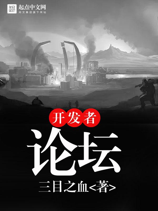 开发者论坛小说