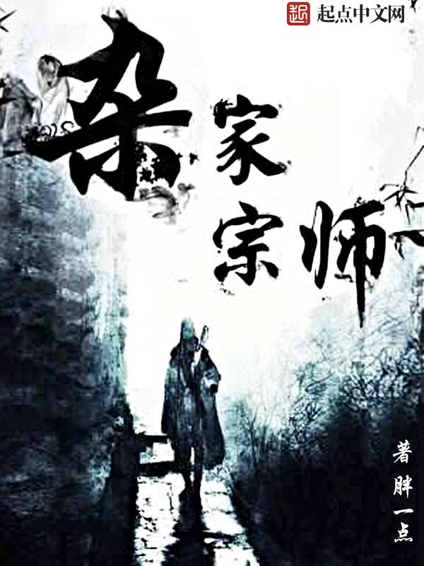 杂家宗师小说